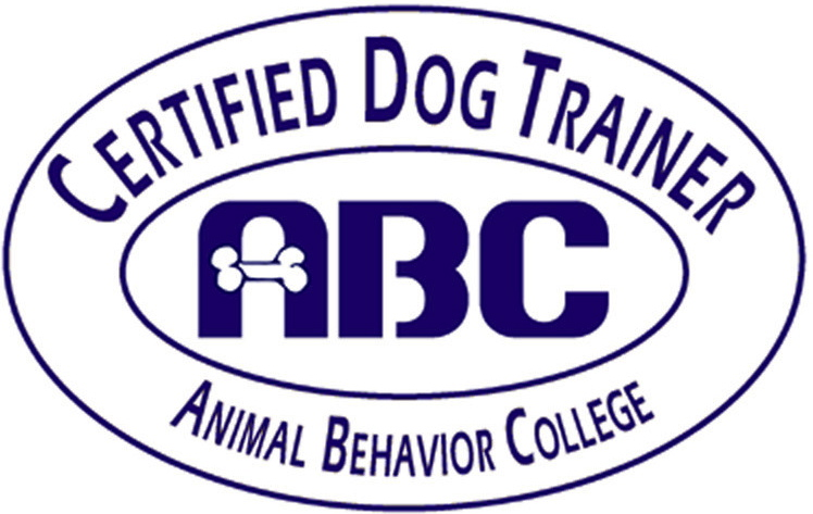 Dog Behavior Training